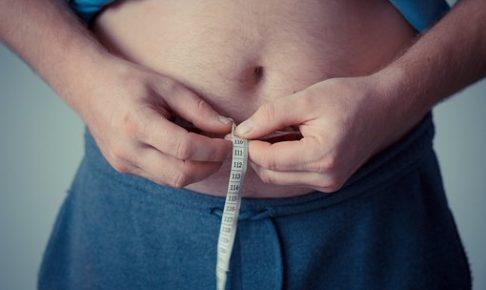 内臓脂肪、皮下脂肪、ダイエット、脂肪燃焼