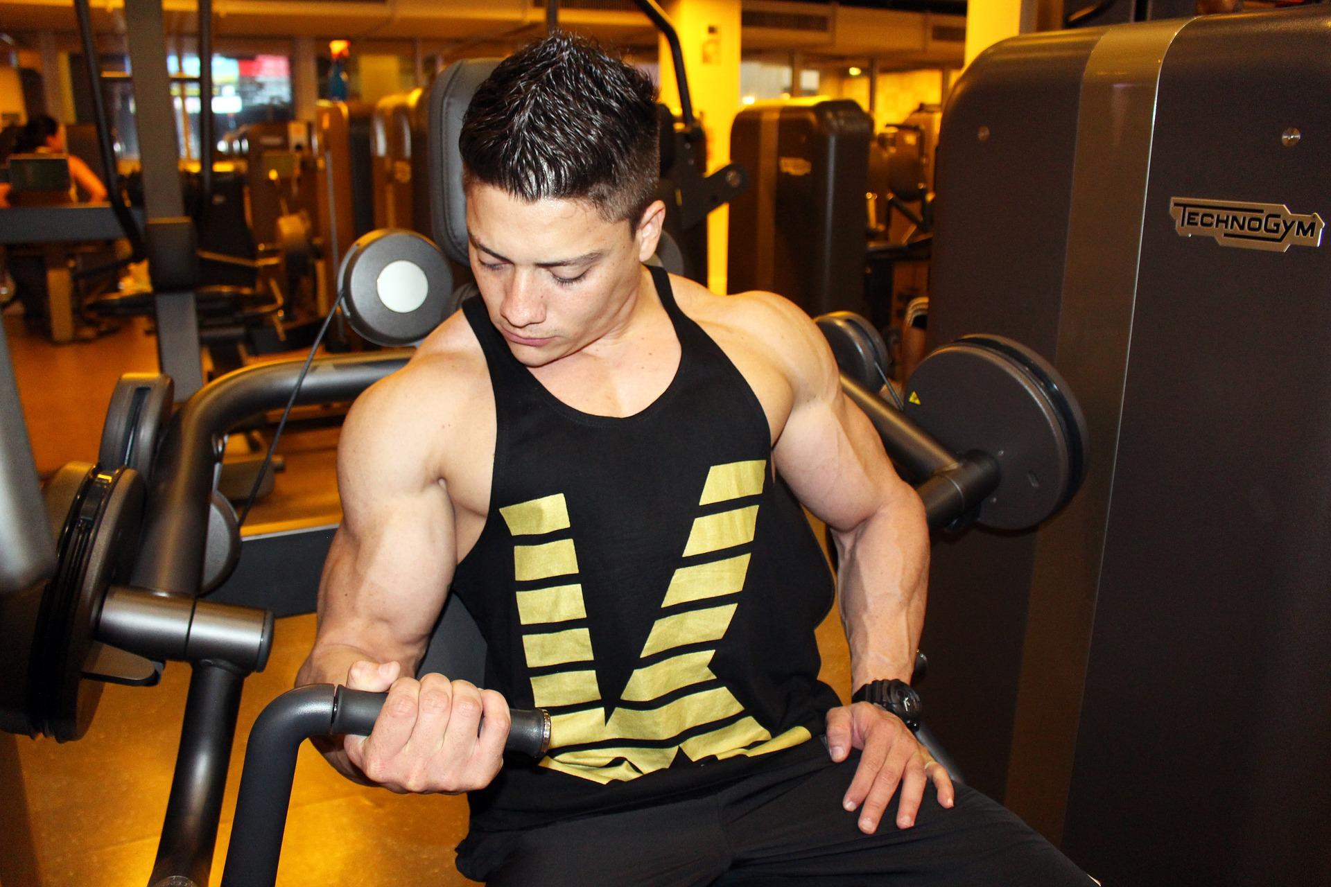 筋トレ、トレーニング、肉体改造